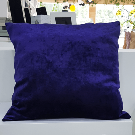 Throw Pillow Design 12